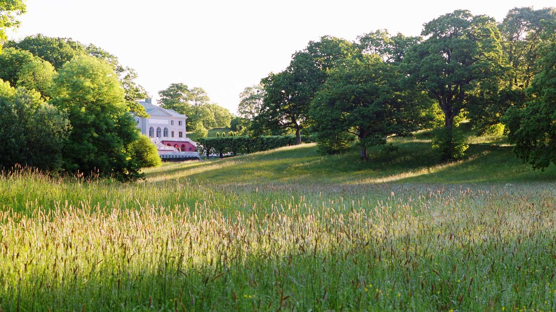 Engelska parken vid Gunnebo Slott & Trädgårdar