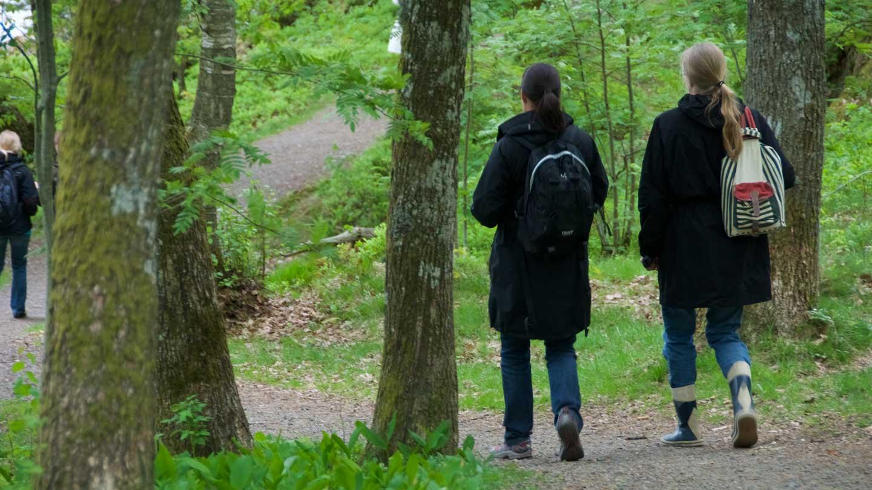 Ett arbetslag från Svenska kyrkan på brainwalk i Gunneboskogen