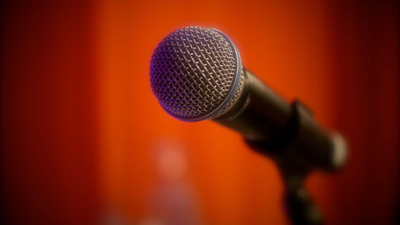 Malin som keynote-speaker (mikrofon)